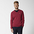 Plain slim fit V-neck sweater