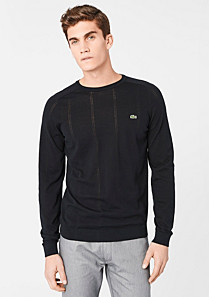 Lacoste Plain sweater in Pima cotton Men